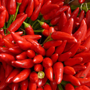 Red chillies.