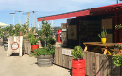 The Pop Up Patch's small cafe and some veggie crates