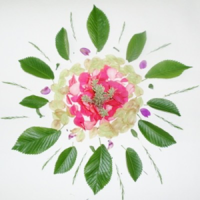 Nature-Inspired Mandala