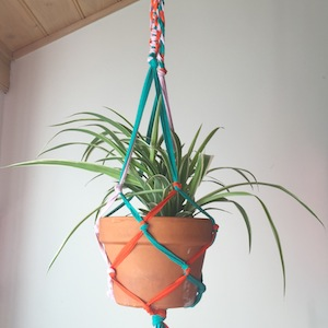 A plant in a terracotta pot, hanging from a macrame planter of blue and red yarn