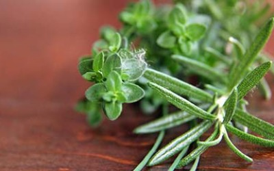 A sprig of thyme and rosemary
