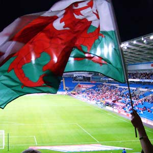 A Welsh flag being waved at a football match.