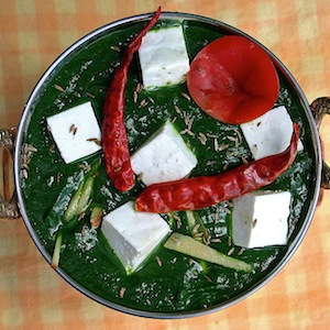 plate of indian dish palaak paneer