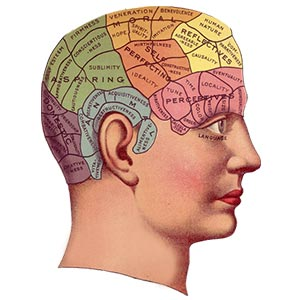 A vintage drawing of a persons head, outlining different brain areas and functions.