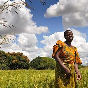 A woman stands in a field in Tanzania.