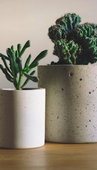 Concrete Crafts: Making a Planter with Maria