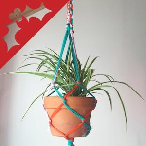 A plant in a terracotta pot, hanging from a macrame planter of blue and red yarn.