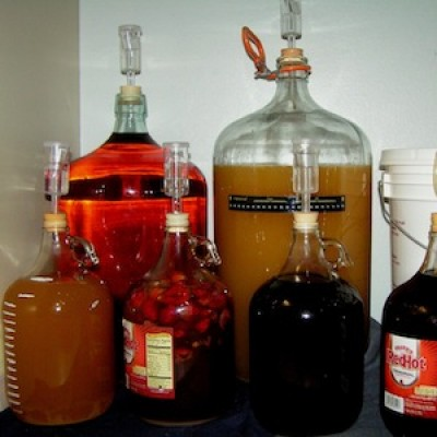 Homebrewing: Fun Fermentation