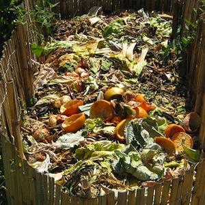 Compost_