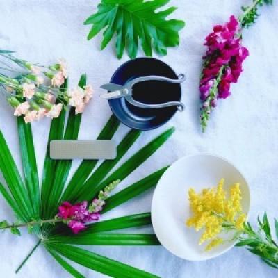 Ikebana – The Art of Japanese Flower Arrangement