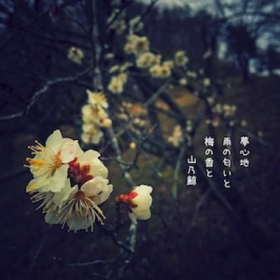 japanese modern haiku