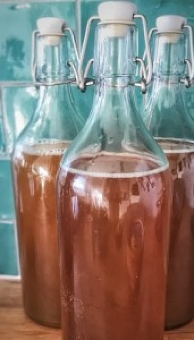Kombucha Basics: Brewing to Bottling with Briony ONLINE