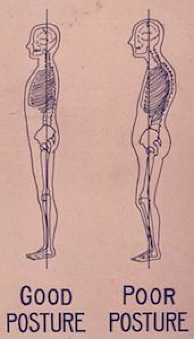 Feldenkrais: Good Posture Naturally with Ralph ONLINE