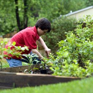 kid gardening in the backyard